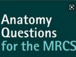 MRCS - Question Bank Anatomy Review
